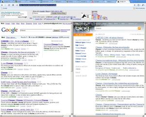 google-vs-bing-dual-view